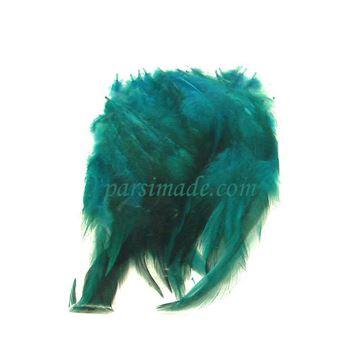 پر رنگی سبز آبی